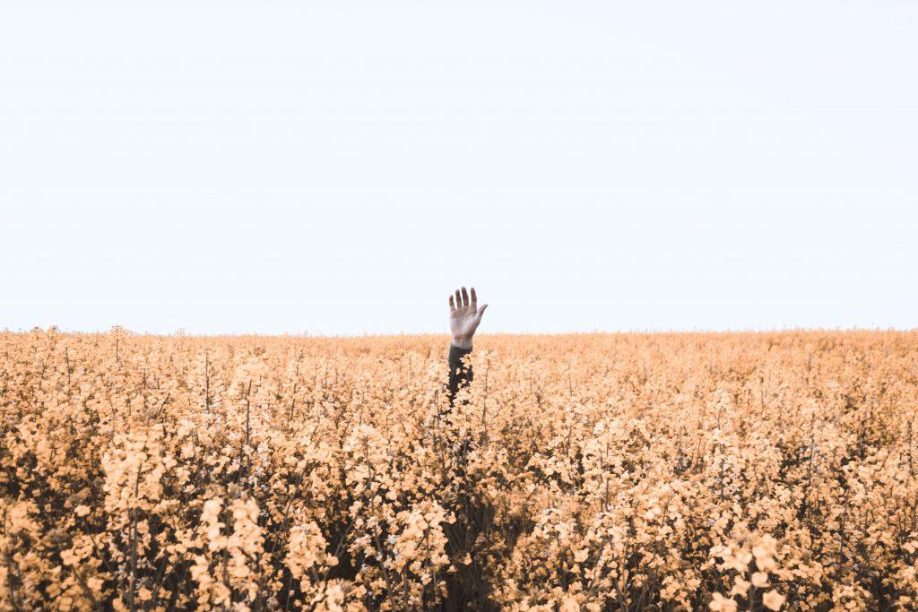 être spirituel article blog les fees de la conscience